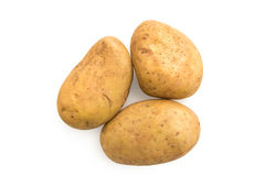 Kartoffel auf weißem Hintergrund Lizenzfreie Stockbilder
