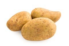 Kartoffel auf weißem Hintergrund lizenzfreies stockfoto