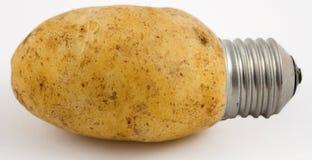 Kartoffel-Leuchte Stockfoto