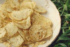 Kartoffelchip lizenzfreie stockfotos