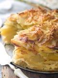 Kartoffelgratin stockbilder