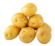 Kartoffelkreole über Weiß Lizenzfreies Stockbild