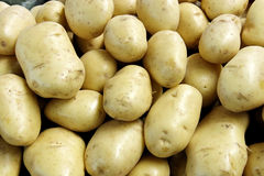 Kartoffeln Lizenzfreies Stockfoto