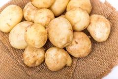 kartoffeln Stockfoto