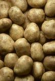 Kartoffeln, die Feld füllen Lizenzfreie Stockbilder