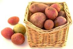 Kartoffeln in einem Korb lizenzfreie stockfotografie