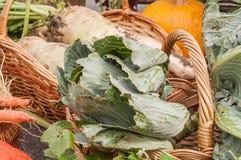 Kartoffeln, Kohl, neue Ernte der Karotten Stockfotografie