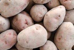 Kartoffeln schließen oben Stockbild