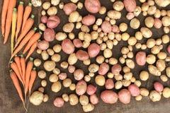 Kartoffeln und Lebensmittel des rohen Gemüses der Karotten für Musterbeschaffenheit und -hintergrund Stockbild