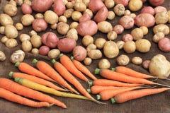 Kartoffeln und Lebensmittel des rohen Gemüses der Karotten für Musterbeschaffenheit und -hintergrund Lizenzfreie Stockbilder
