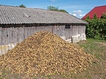 Kartoffelstapel Stockbild