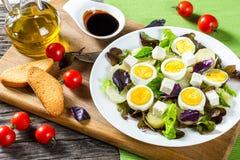 Kartoflana sałatka z kurczaków jajkami, liścia oakleaf sałata, ser, Fotografia Royalty Free