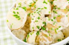 Kartoflana sałatka Obraz Royalty Free