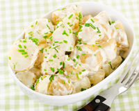 Kartoflana sałatka Obraz Stock