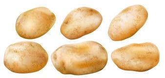 Kartoflane bulwy na białym tle Zdjęcia Stock