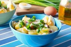 Kartoflanej sałatki wieśniak Fotografia Royalty Free