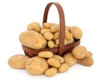 Kartoflani Typ Zdjęcie Stock