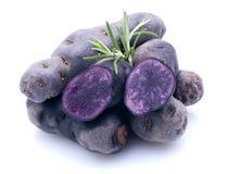 kartoflany violette zdjęcia royalty free