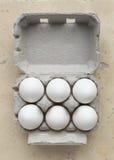 Karton sześć białych jajek Zdjęcie Stock