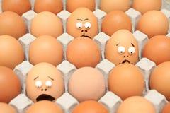 Karton van eieren Stock Afbeelding