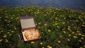 Karton z pizz? na wybrze?u w dandelions zdjęcie wideo