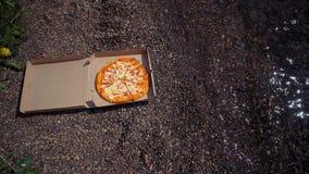 Karton z pizz? na otoczak pla?y zdjęcie wideo