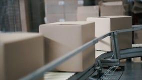 Kartondozen op transportband in fabriek klem Productielijn waarop de dozen zich bewegen royalty-vrije stock foto