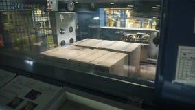 Kartondozen op transportband in fabriek klem Verpakkingsproducten in een doos bij de fabriek stock footage