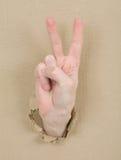 kartonowa gesta ręki samiec Zdjęcia Stock