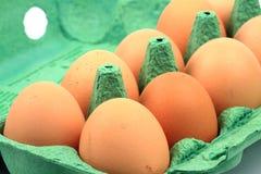 kartonu kurczaka jajka Zdjęcia Royalty Free