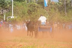 Traditional recreational sport activity in Jaffna stock photography