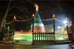 Karusell i natten Royaltyfria Bilder