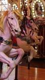 Karusellhästar fotografering för bildbyråer