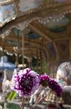 Karussell und Blumen Stockbild