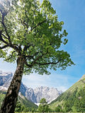 Karwendel Royalty Free Stock Images