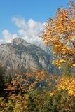 Karwendel mountain in autumnal landscape Royalty Free Stock Image