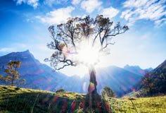 Karwendel mountains Royalty Free Stock Photos