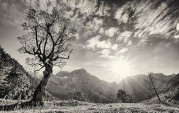 Karwendel mountains Royalty Free Stock Image