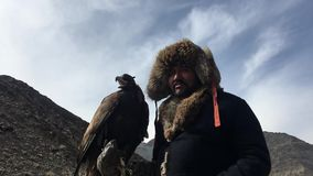 Kasachische traditionelle Kleidung Eagle Hunters, bei der Jagd zu den Hasen, die einen Steinadler auf seinem Arm halten stock video