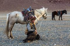 Kasachischer Eagle Hunter Berkutchi mit Pferd bei der Jagd zu den Hasen mit von Steinadlern auf seinen Armen Stockbild