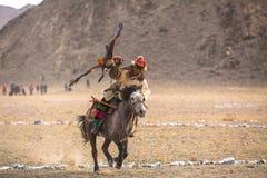 Kasachischer goldener Eagle Hunter an der traditionellen Kleidung, mit einem Steinadler auf seinem Arm Stockbild