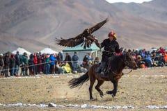 Kasachischer goldener Eagle Hunter an der traditionellen Kleidung, mit einem Steinadler auf seinem Arm Stockfoto