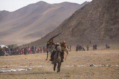 Kasachischer goldener Eagle Hunter an der traditionellen Kleidung, mit einem Steinadler auf seinem Arm während des jährlichen nat Lizenzfreie Stockbilder