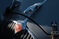 Kasakhstan Kostanay, 19-06-19, samlar Peking till Paris Emblemet av en tappningbil Jaguar Närbild av delen av huven av a royaltyfri fotografi