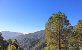 Kasauli, Himachal Pradesh, India Immagini Stock Libere da Diritti