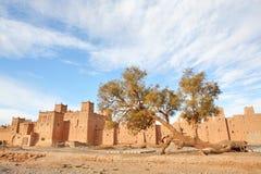 kasbah摩洛哥人 图库摄影