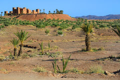 Kasbah in Morocco, Africa Royalty Free Stock Photos