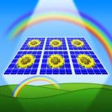 kasetonuje słonecznych słoneczniki Obrazy Stock