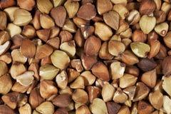 Kasha del grano saraceno ad a grandezza naturale fotografia stock libera da diritti