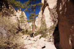 Kasha-Katuwezelt schaukelt Nationaldenkmal, New Mexiko, USA Lizenzfreies Stockbild